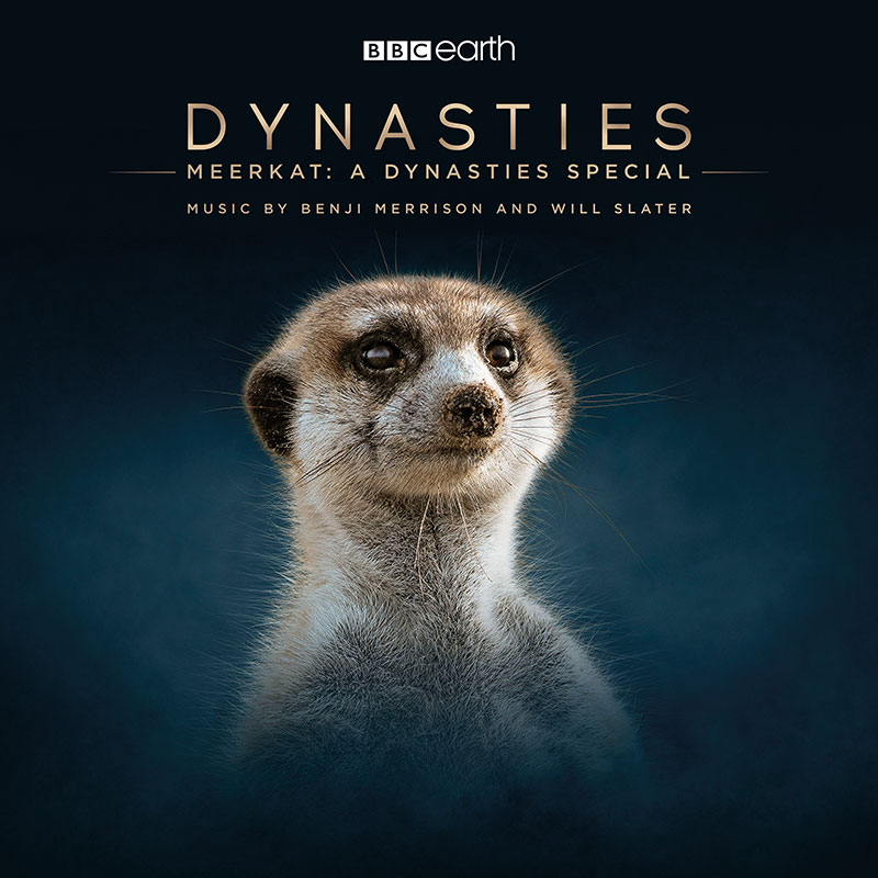 Meerkat: A Dynasties Special